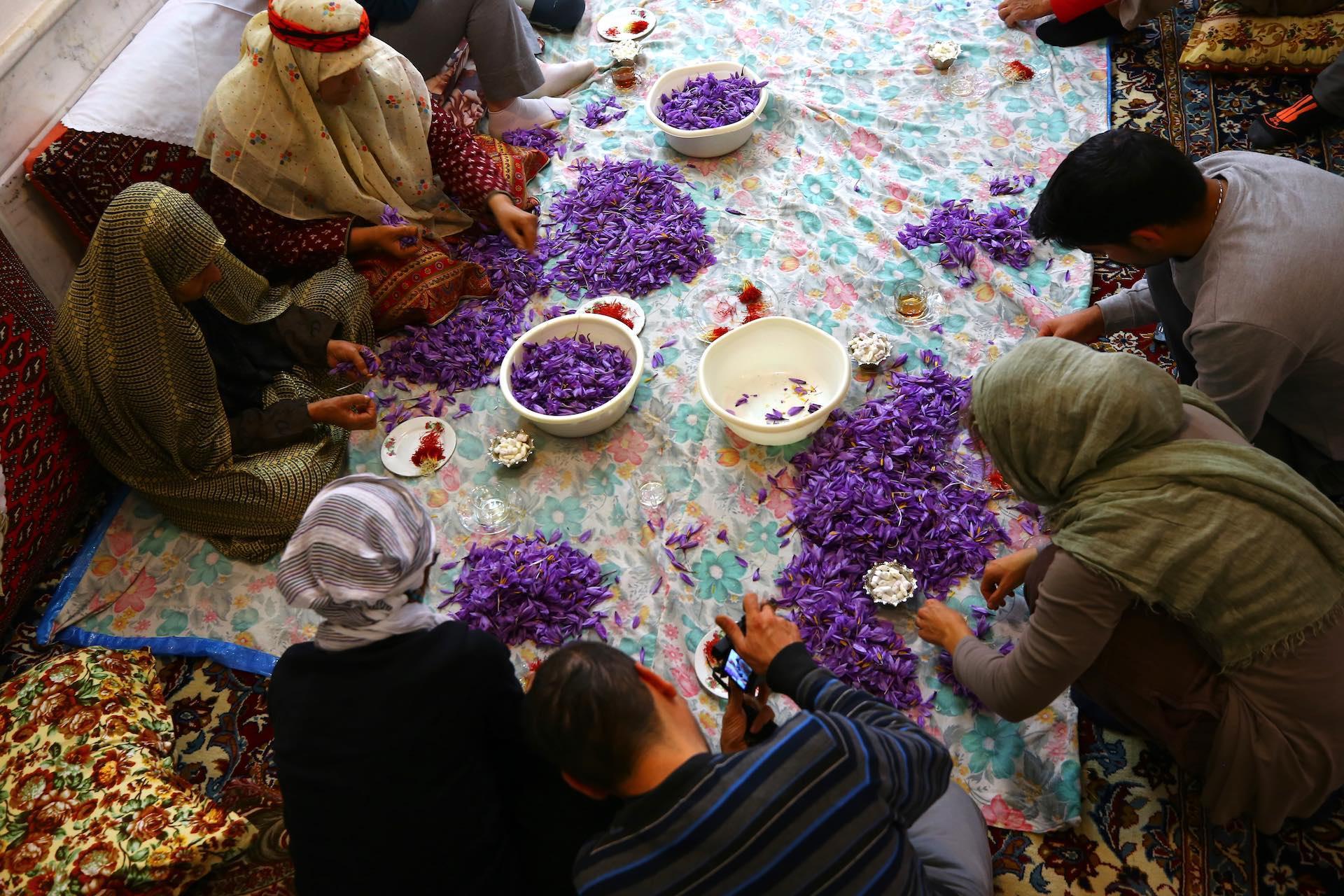 viaggio_in_Iran_alla_scoperta_dello_zafferano_iraniano_4_-_pistilli.jpg